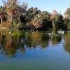 01_lago.jpg