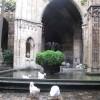 catedral_14.jpg